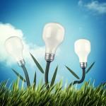 Proyectos ecológicos, ¿en qué consisten?